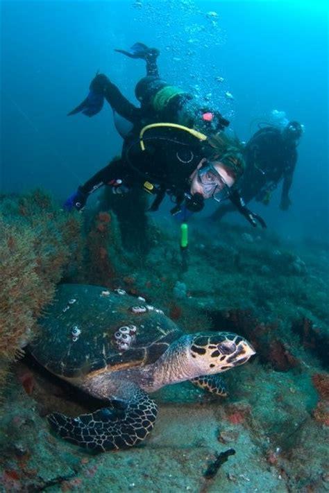 ft lauderdale dive shop scuba gear sea experience
