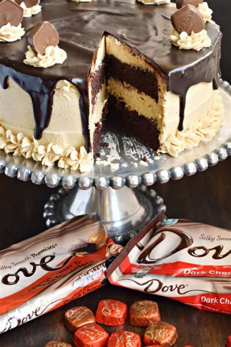 chocolate peanut butter cheesecake cake dove chocolate shugary