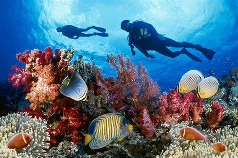 places scuba dive world dive sites worth visiting