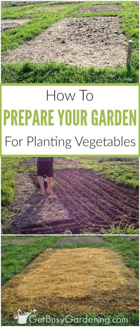 prepare garden bed planting vegetables vegetable garden soil