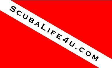 scuba diving south florida scubalife4u scuba certification ft