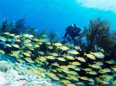 destin top 10 locals list florida travelchannel destin