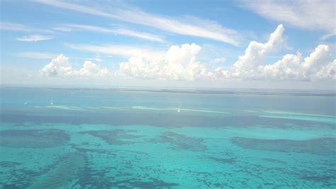 top dive sites florida keys