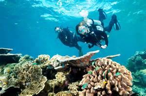 popular experiences australia tripadvisor travel weekly