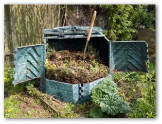 vegetable garden fertilizer tips healthy garden