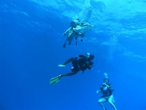 scuba diving pictures dive store englewood florida sarasota