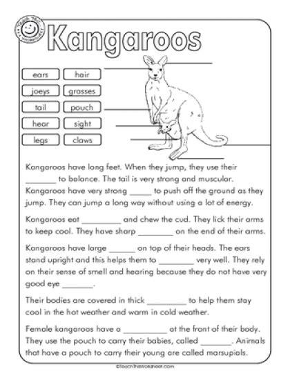 kangaroo label cloze education pinterest kangaroos worksheets school