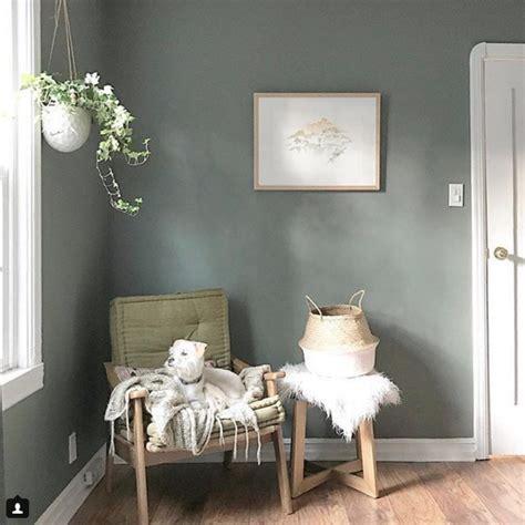 village green behr decor green wall color home