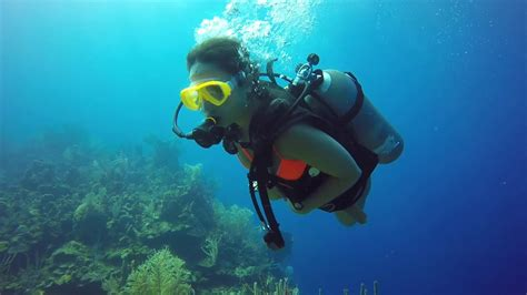pro roatan honduras scuba diving 2019 youtube