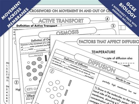 gcse biology diffusion osmosis active transport worksheet pack