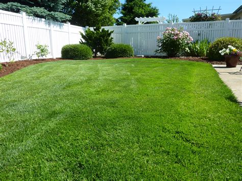 free images nature grass plant lawn home walkway