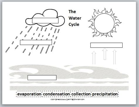 learning ideas grades 8 water cycle ms frizzle