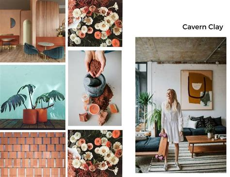cavern clay sherwin williams color year 2019 inspiration