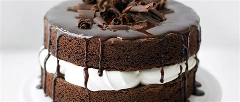 easy sponge cake recipe basic chocolate sponge cake