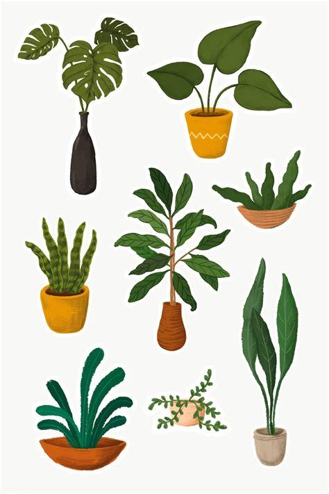download premium indoor plants sticker collection 2023377 ในป