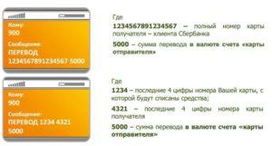 전화로 전화에서 Sberbank 카드로 돈을 돌려 보내는 방법 900