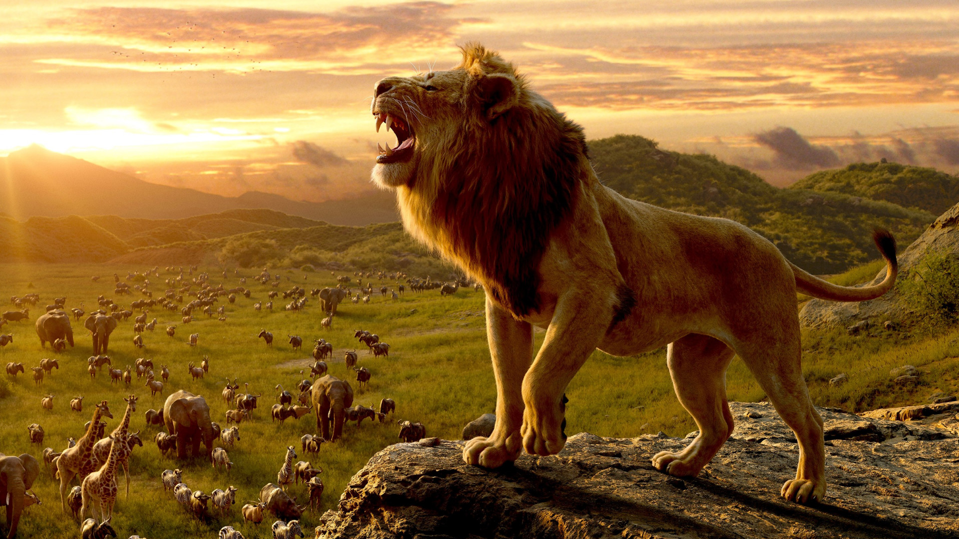 Download Wallpaper Simba The Lion King 1920x1080