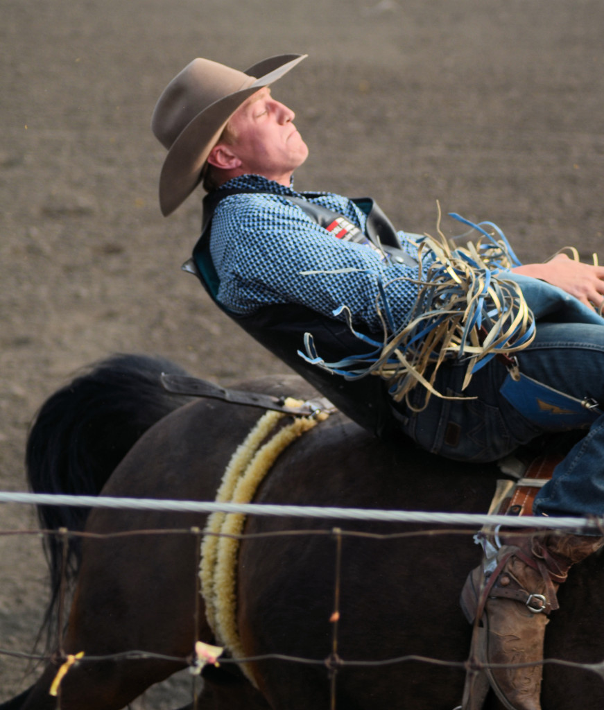 Unity Western Days Rodeo Bronc Riding Unity Stories