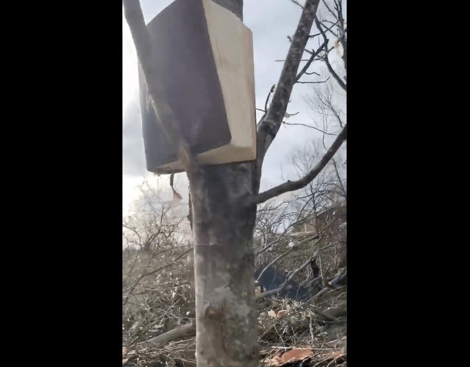 ¿Qué libro sobrevivió al tornado de Nashville?
