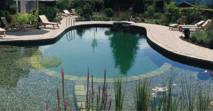 How Much Does It Cost Build Pond