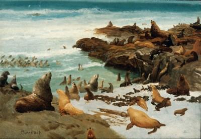 File:Seal Rocks, Farallons 1872 Albert Bierstadt.jpg ...