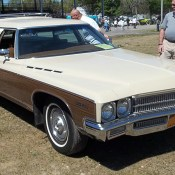 1978 Buick Regal For Sale (23)