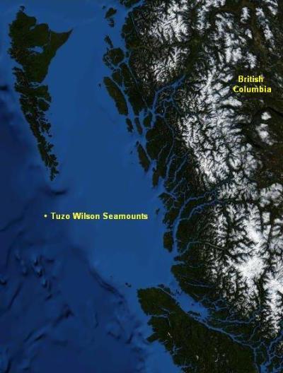 Tuzo Wilson Seamounts - Wikipedia