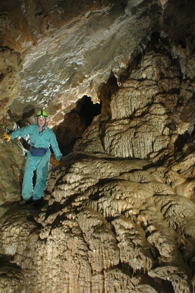 Horne Lake Caves Provincial Park - Wikipedia