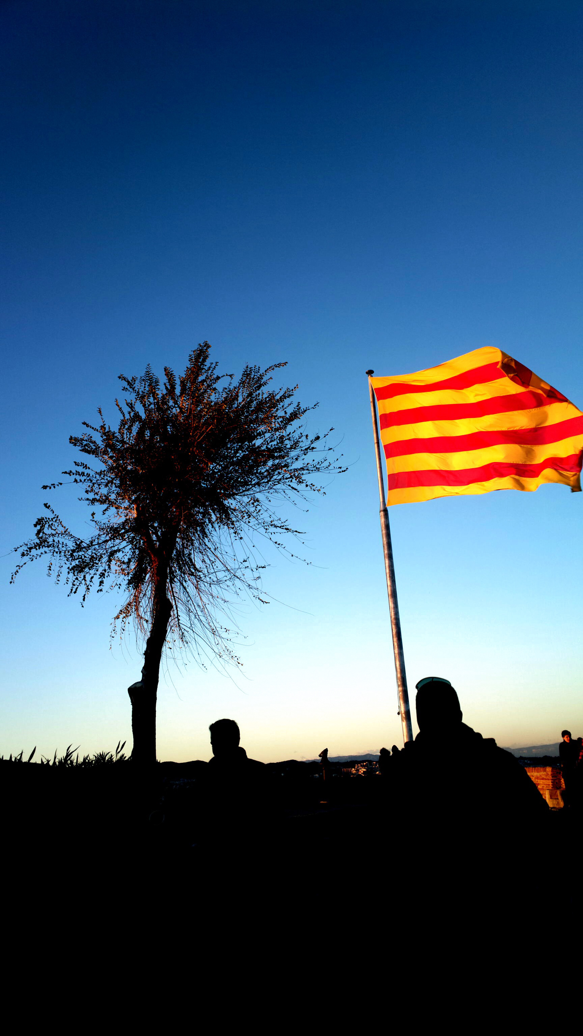 File Catalan Flag Barcelona Catalonia Spain Jpg