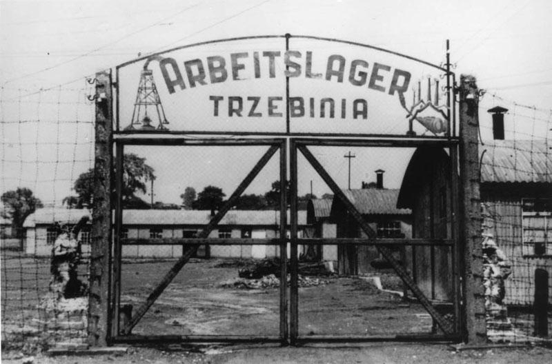 Auschwitz Prisoner List