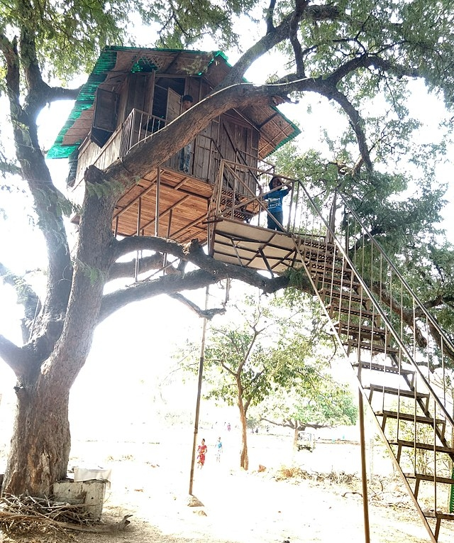 Tree House Wikiwand   Spiral Staircase Around Tree Trunk   Treehouse Masters   Ter Kulve   Canopystair   Robert Mcintyre   Wooden Stairs