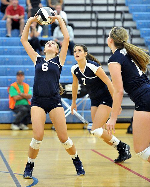 women's volleyball net height - HD960×1200