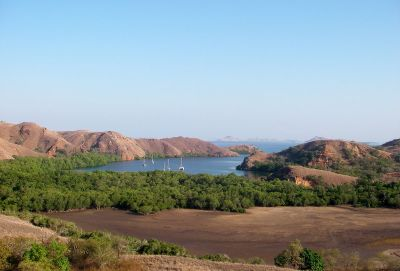 Pulau Komodo - Wikipedia bahasa Indonesia, ensiklopedia bebas