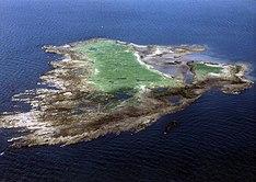 Horse Isle - Wikipedia