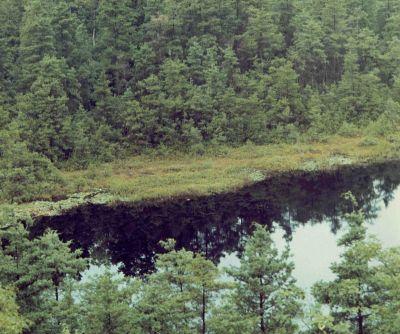 Ell Pond - Wikipedia