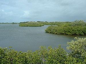 Orchid Island (Florida) - Wikipedia