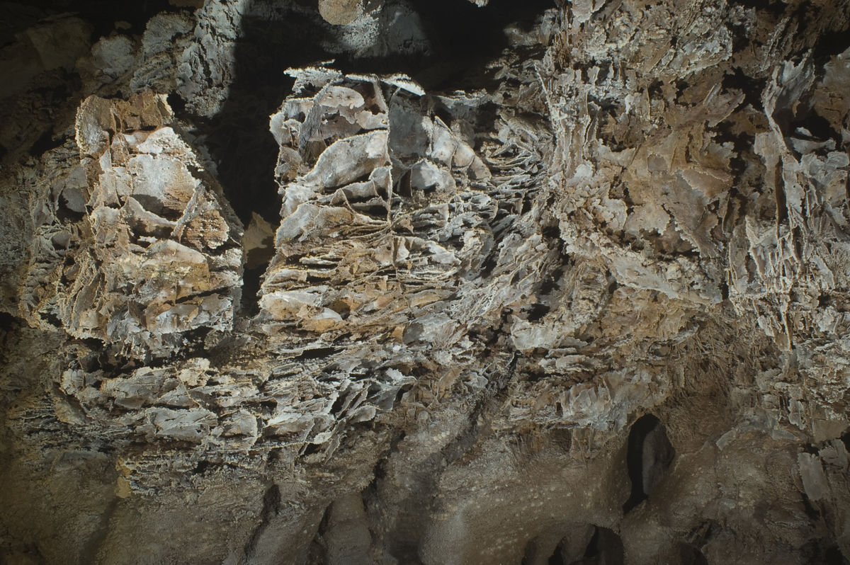 Wind Cave National Park Travel Guide At Wikivoyage