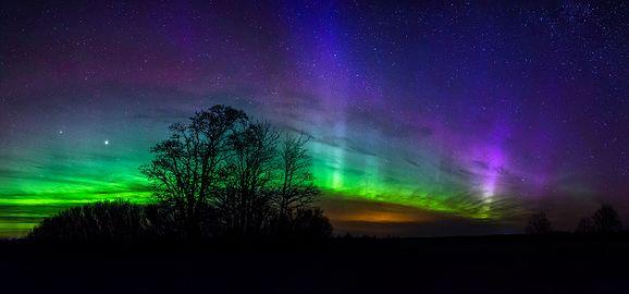 Northern Light Wikipedia