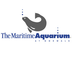 Maritime Aquarium at Norwalk - Wikipedia
