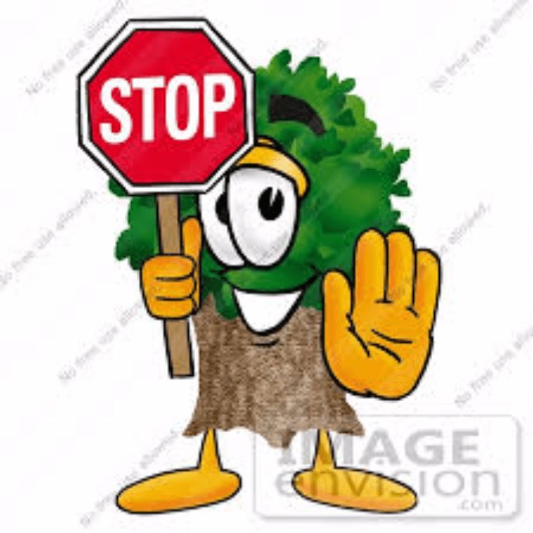 Stop Cutting Trees by Hushen H. - Letters to the Next ...