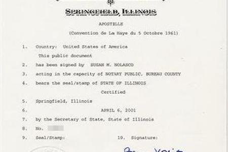 Certificate Of Dissolution Of Marriage Illinois Free Professional