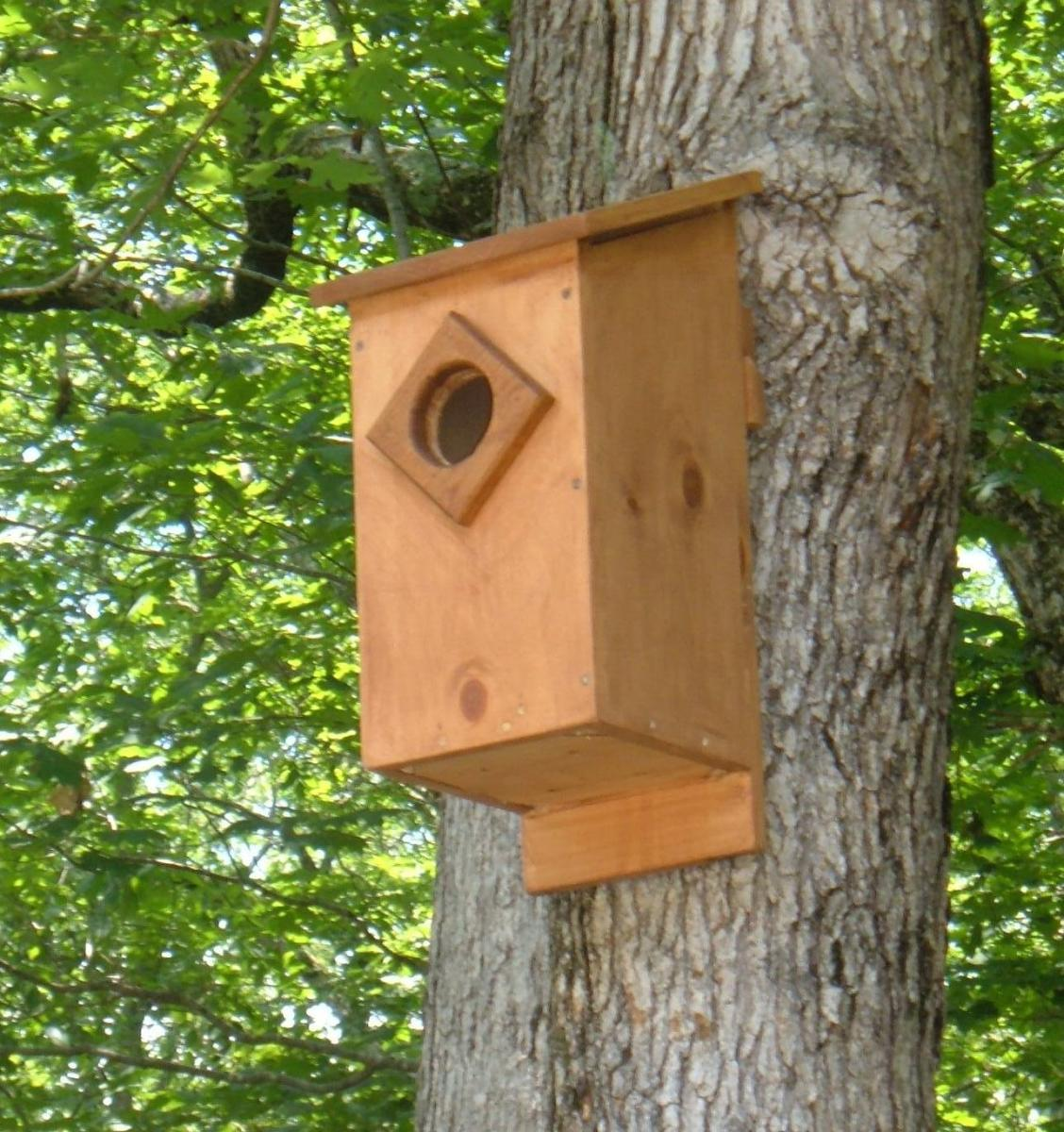 Screech Owl House Plans: How to Build a Screech Owl Box ...