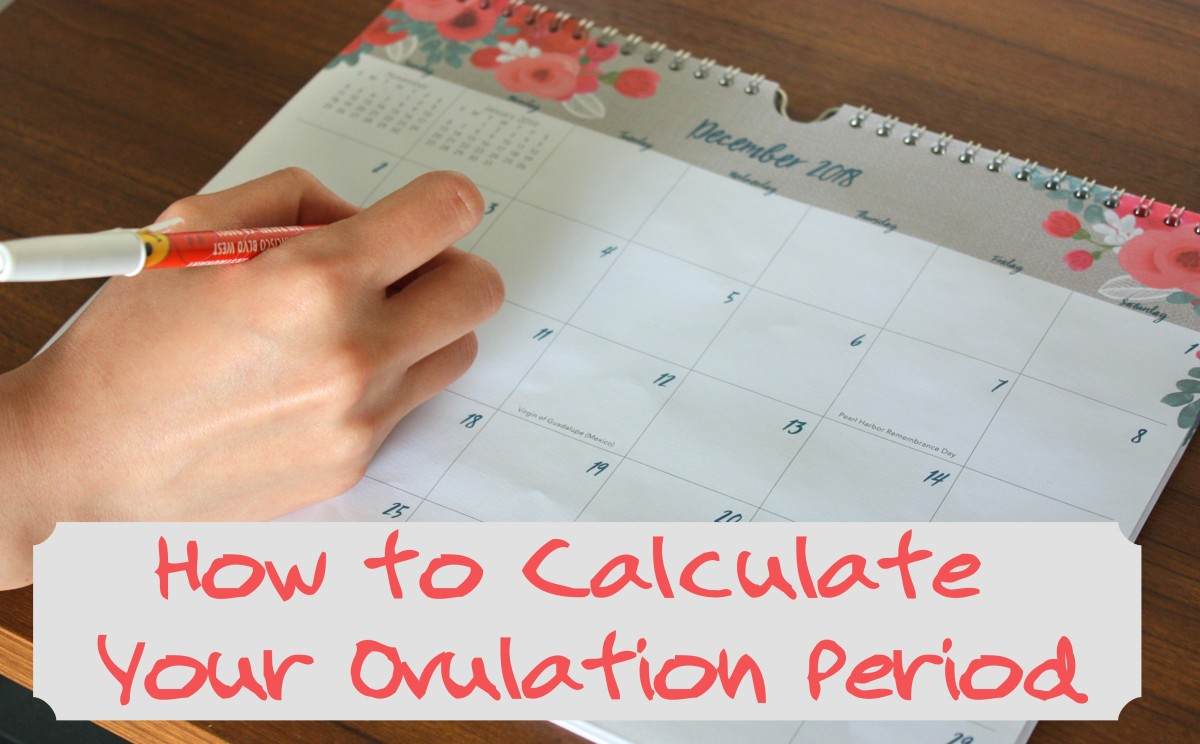 How to Calculate Your Ovulation Period Using Your ...
