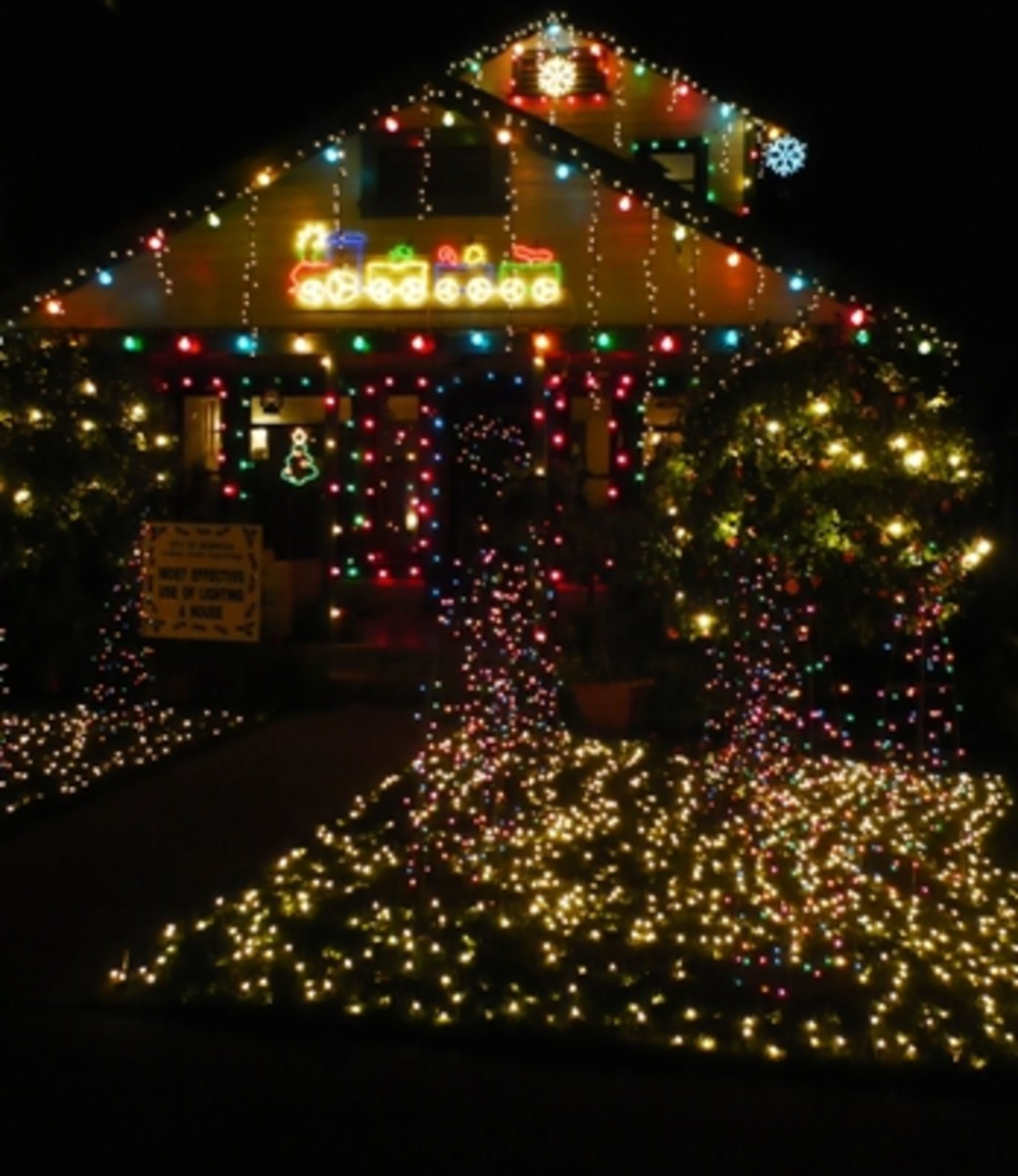 C5 Led Christmas Lights