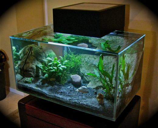 Fluval Edge Aquarium Led Lights