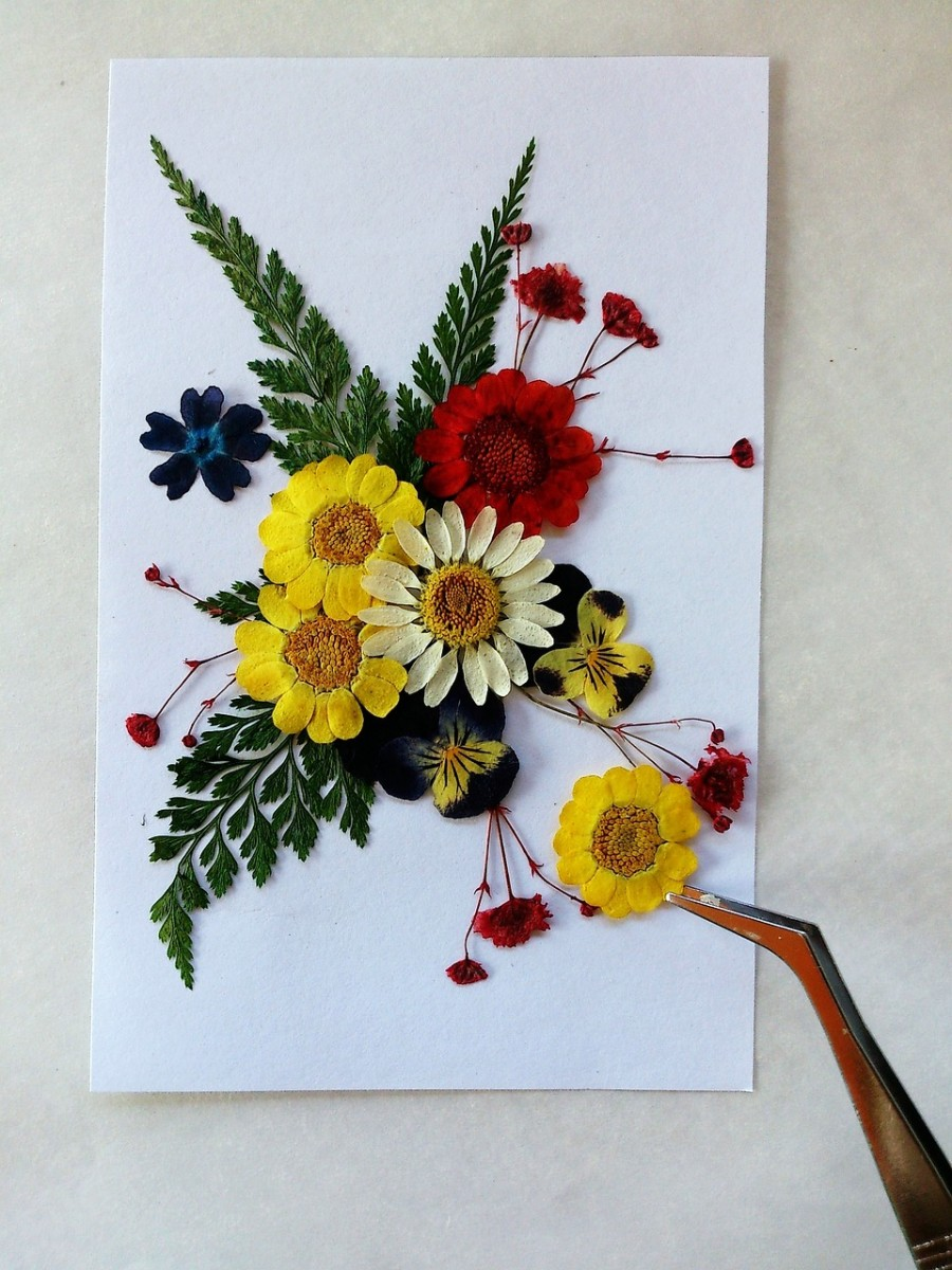 The Basic Art of Flower Pressing   FeltMagnet Pressed flowers make beautiful decorations