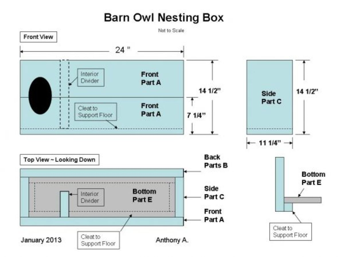 How to Build a Barn Owl Nesting Box: Barn Owl Nest Box ...