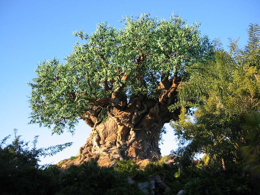 World Life Tree Disney