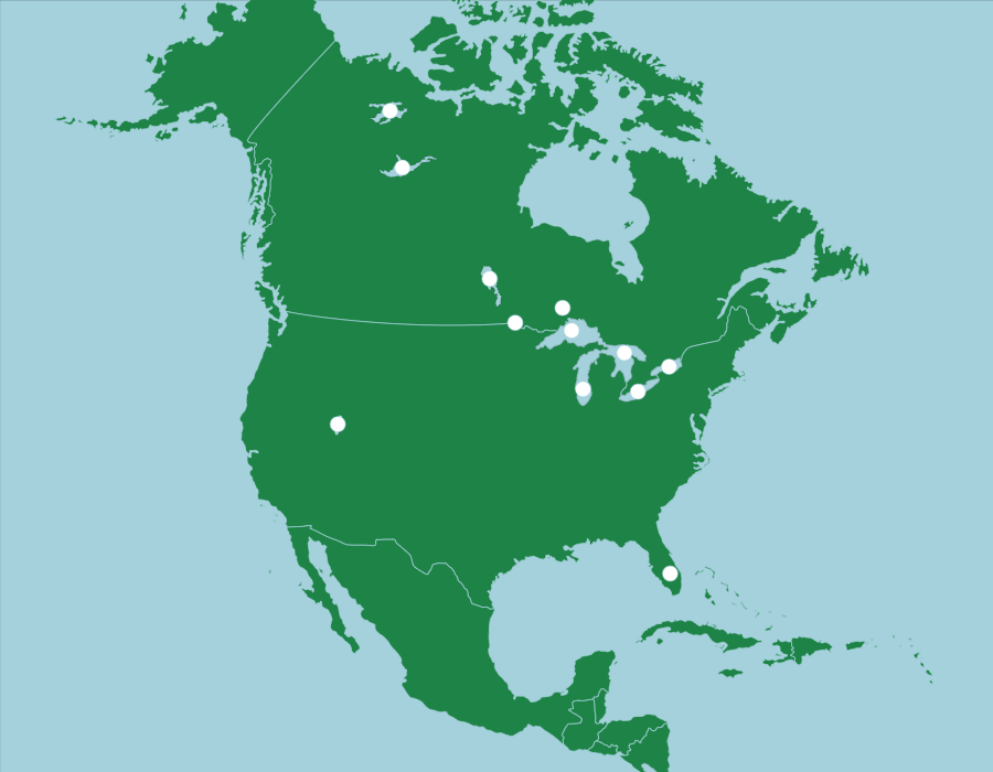 north america countries - 900×700