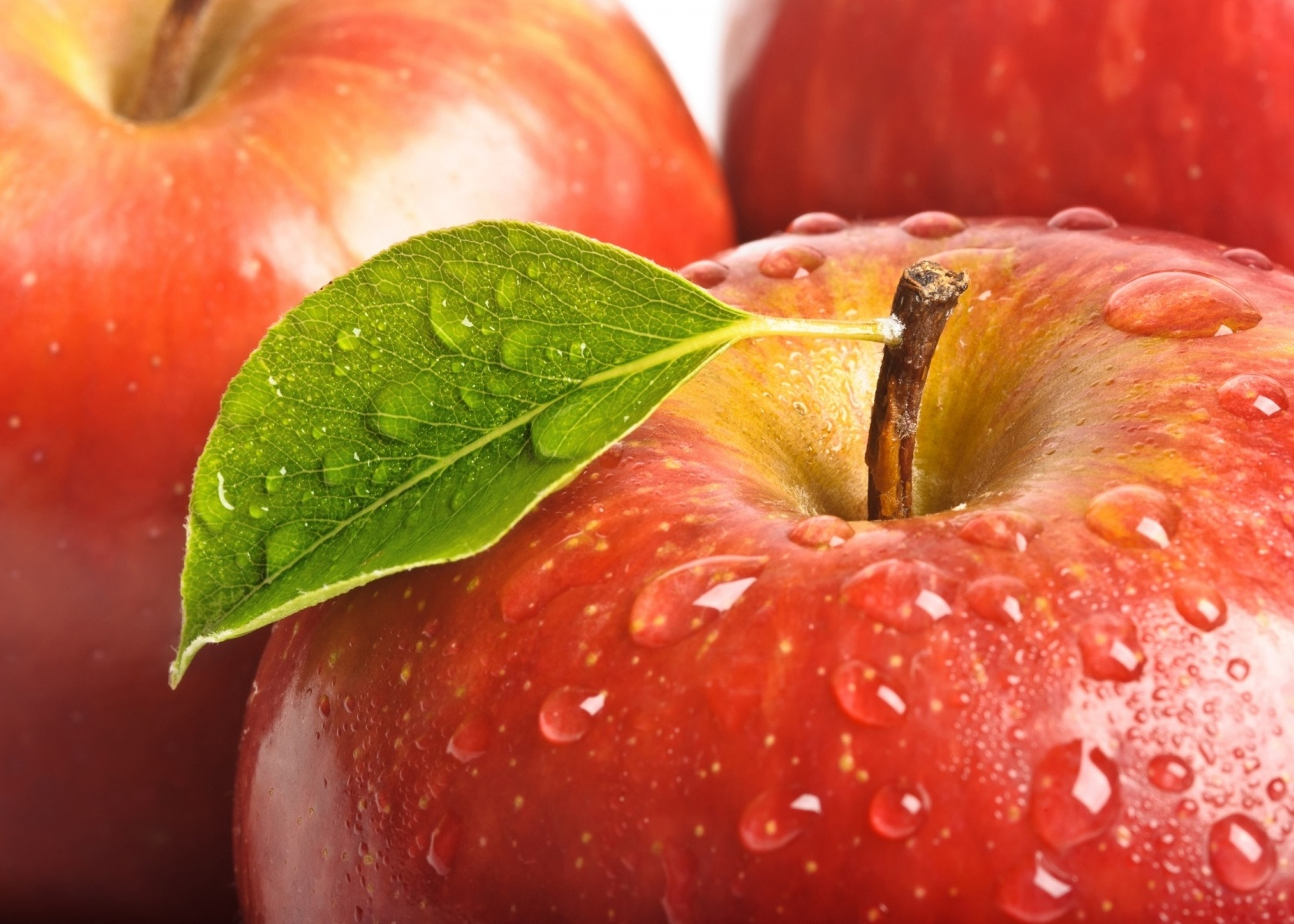 Fresh Apples Goods From Uzbekistan At Wholesale Prices